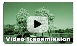 transmisja video